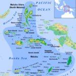 Jasa Pengiriman Barang ke Maluku