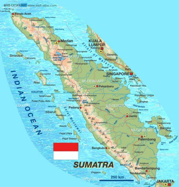 Pengiriman Barang Sumatra